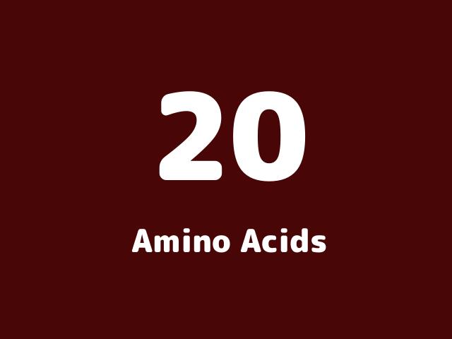 なぜ20種類以上、必要なアミノ酸は増えなかったのですか?